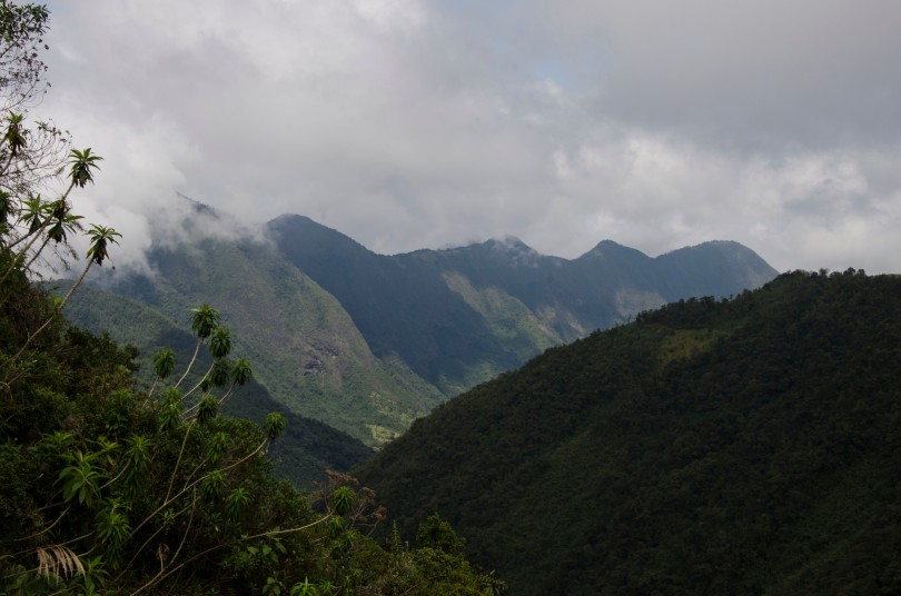 A view of the mountains from the main trail.