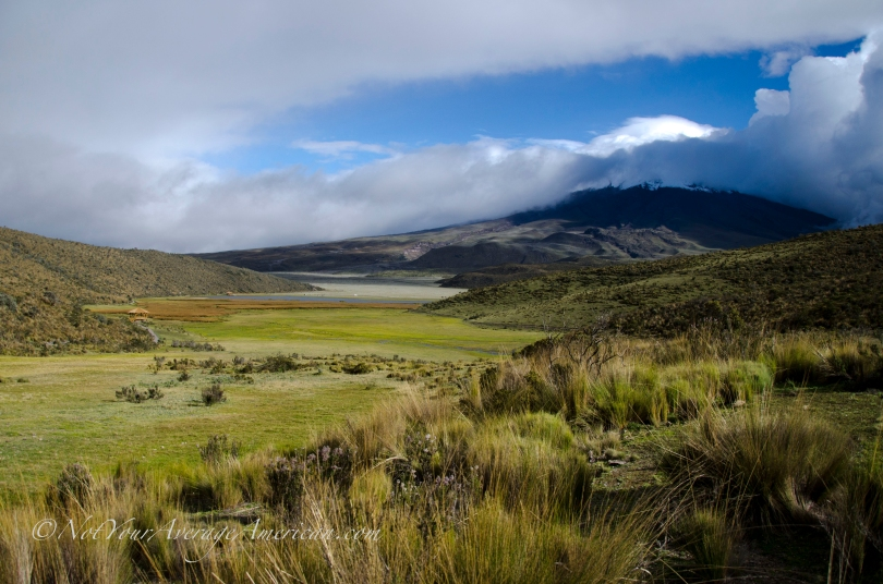 This is Cotopaxi as seen about Limpiopungo, a wetlands area awash with birds.