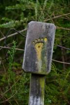 The trail markers were unique!