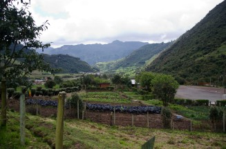 A small organic farm at the base of the trail.