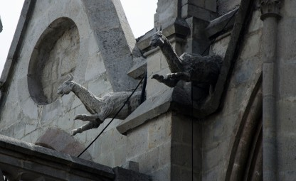 An example of a native grotesque - llamas leaping form the sides of the Basilica.